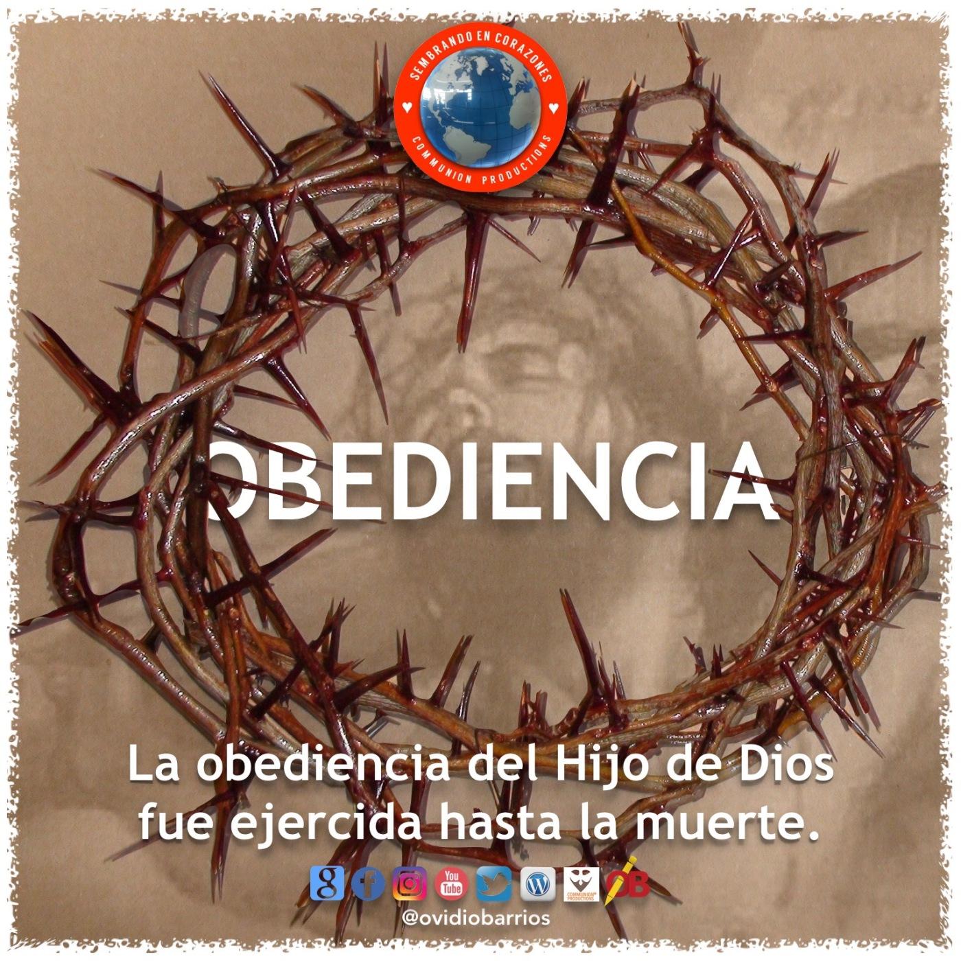 OBEDIENCIA – Sembrando en Corazones